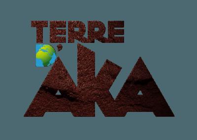 Création Graphique & site internet pour l'agence Terre d' Aka